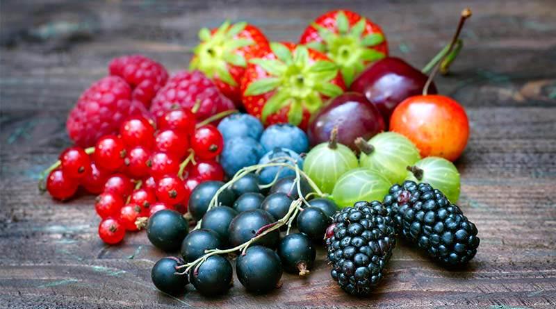 Owoce świata - spirulinabio