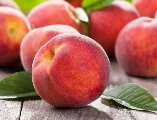 Brzoskwinia – wartości odżywcze i zastosowanie