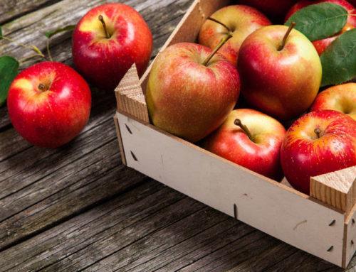 Jabłko – powody, dla których warto je jeść