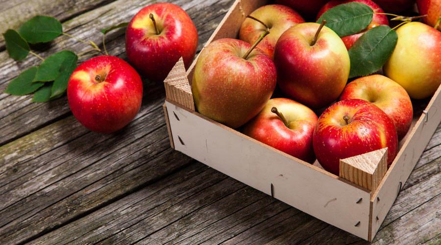 Jabłko - powody, dla których warto je jeść