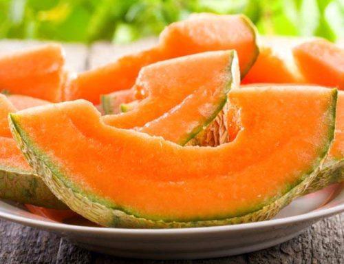 Melon – rodzaje i właściwości