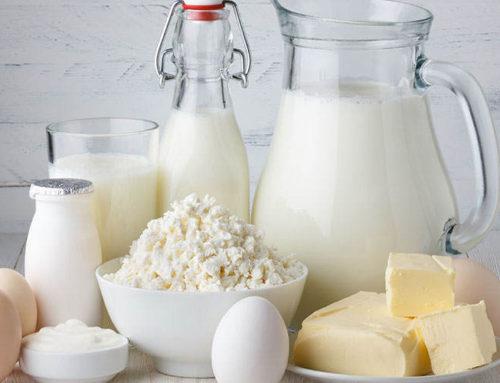 Dieta bez laktozy – jakie produkty jej nie posiadają?