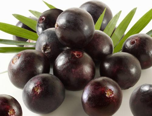 Owoce acai – właściwości i zastosowanie